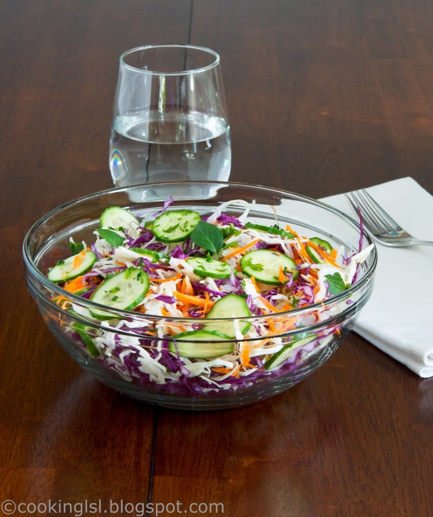 Fresh-Cabbage-Salad-Purple-And-Green-Cabbage