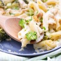 Chicken and Broccoli Pasta Bake Recipe - creamy pasta in a pan