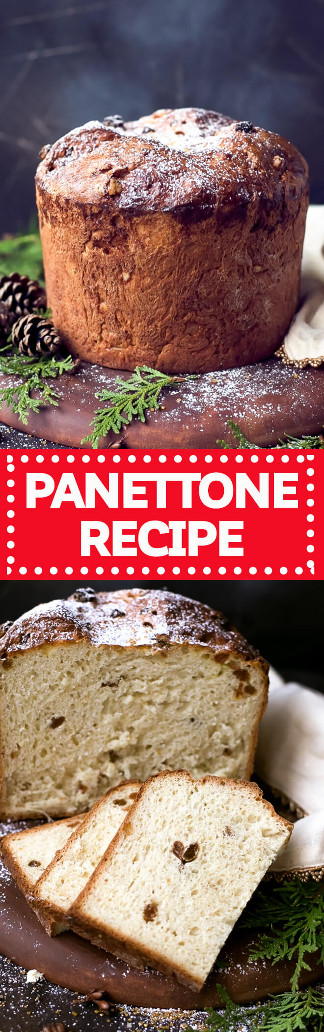 Easy Homemade Italian Christmas Bread Panettone Recipe - perfect for the holidays! This Panettone Recipe does require some planning, but if you follow my instructions, you'll end up with a sweet, puffy and festive holiday bread.
