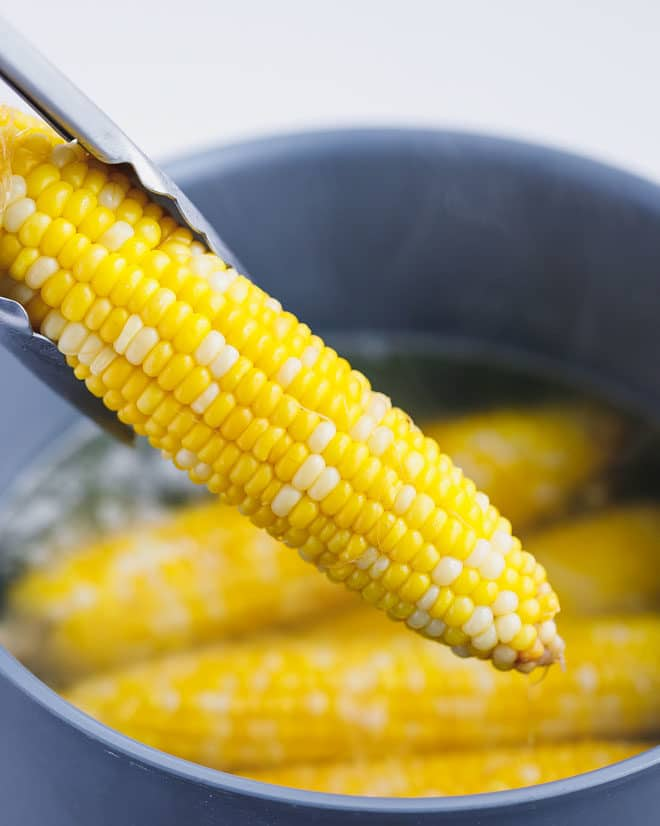 A ear of sweet corn on the cob taken out of the pot with hot boiling water