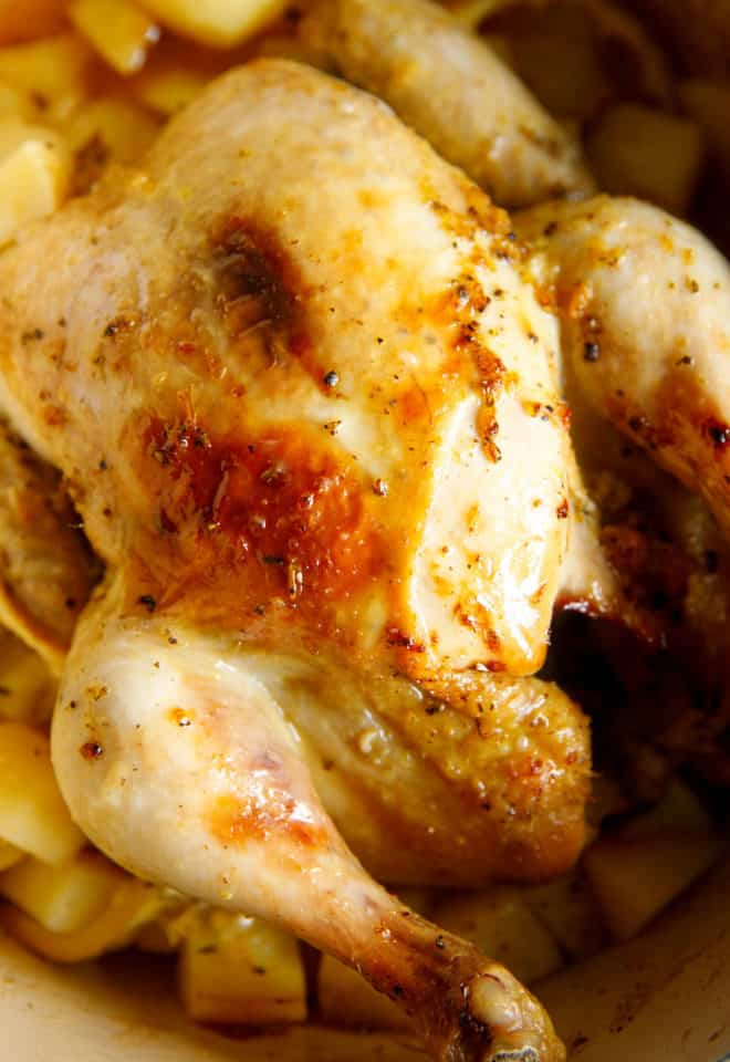 Whole roasted chicken in a pan